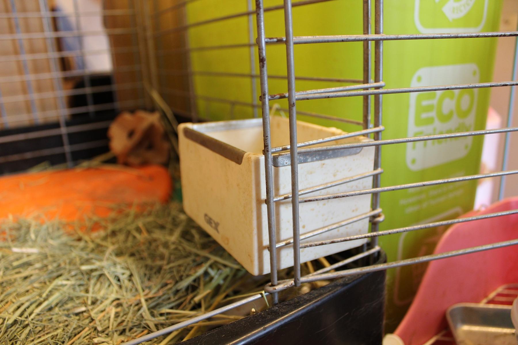 ウサギの飼い方 2 ~用品