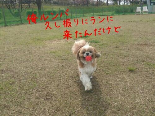 fc2_2014-04-20_08-13-58-660.jpg