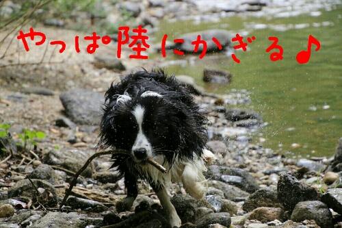 fc2_2014-06-23_02-22-59-292.jpg