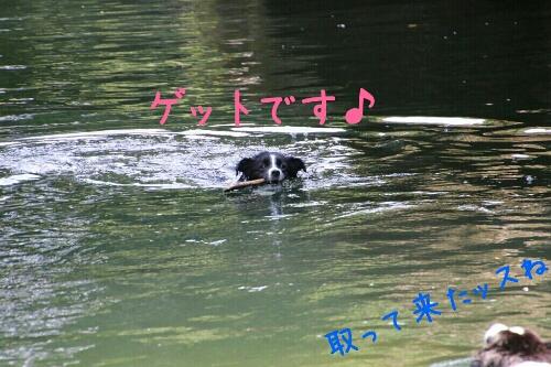 fc2_2014-08-16_23-52-58-809.jpg