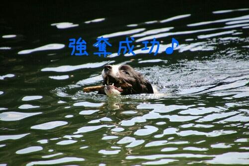 fc2_2014-08-17_00-08-00-987.jpg