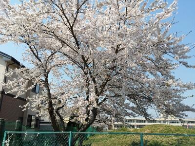 fc2_2014-04-24_21-48-17-881.jpg