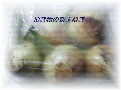 20140518205333d00.jpg
