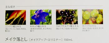 loracle10_clean.jpg