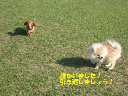 20140510_3.jpg