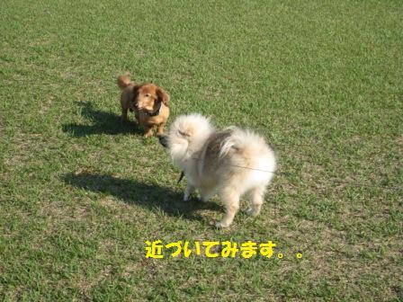 20140510_4.jpg
