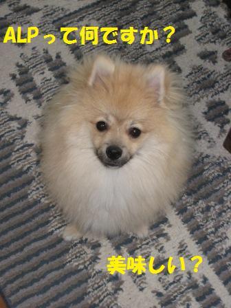 20140715_1.jpg