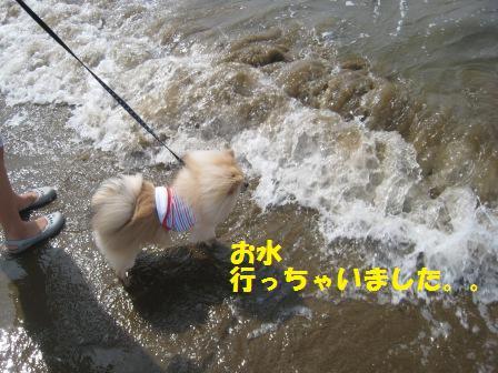 20140831_13.jpg