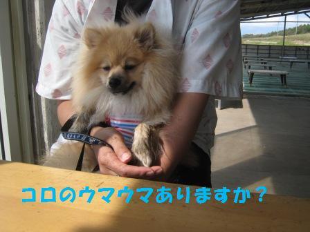 20140831_22.jpg