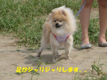 20140831_3.jpg