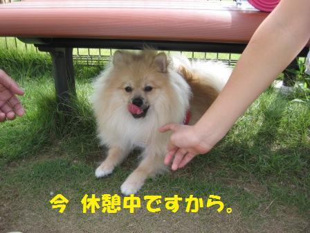 20140831_7.jpg