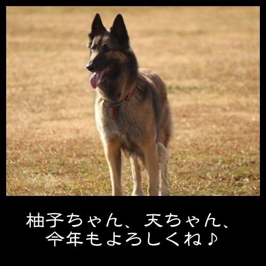 7_20140209100514965.jpg