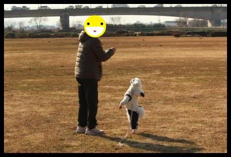 8_20140209100515adc.jpg