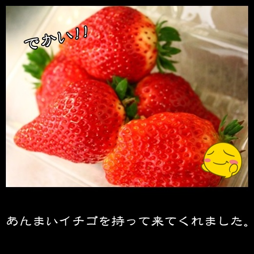 9_20140222103428f16.jpg