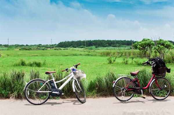 小浜島自転車