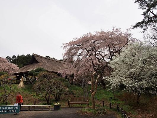 chichibu-20140412-04s.jpg