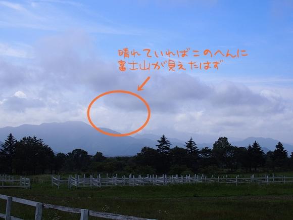 hanako-20140813-02s.jpg