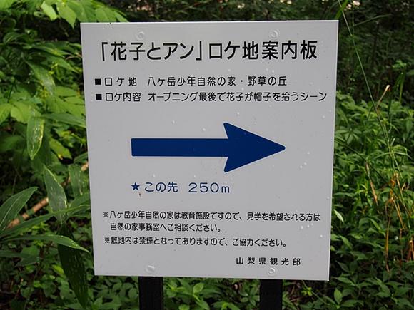 hanako-20140813-05s.jpg