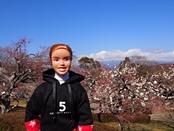 iwamotoyama-20140308-16s.jpg
