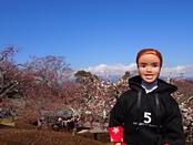 iwamotoyama-20140308-17s.jpg
