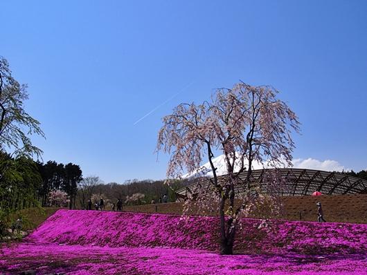 jyuku-20140427-15s.jpg