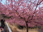matukawa-20140315-11s.jpg