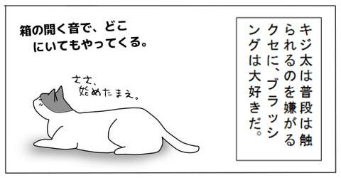 20140717-2.jpg