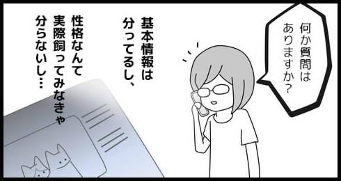 20140910-6.jpg