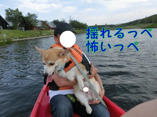 20140806_4.jpg