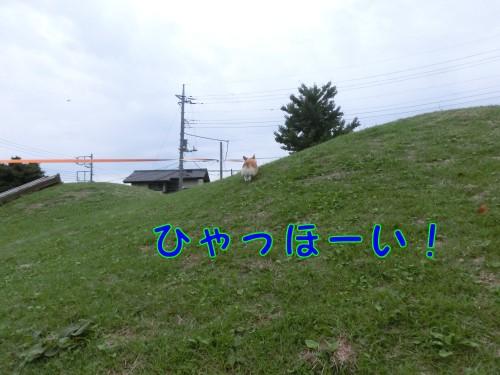 20140921_03.jpg