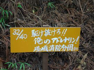 DSC03320-2014o.jpg