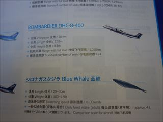 DSC04323-2014o.jpg