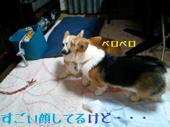 20140318160610cec.jpg