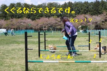 2014042617081710d.jpg