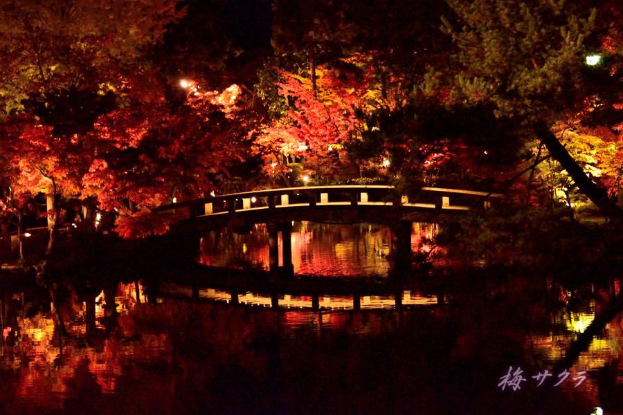 京都18(4)変更済