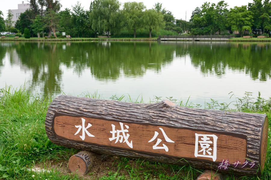 水城公園1変更済