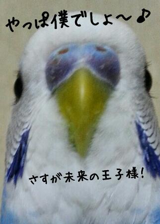 fc2_2014-04-28_09-02-49-006.jpg
