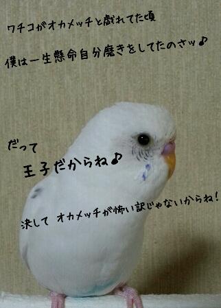 fc2_2014-05-30_23-06-19-873.jpg