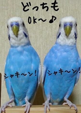 fc2_2014-06-28_23-10-10-740.jpg