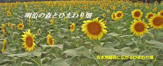20140814012958e78.jpg