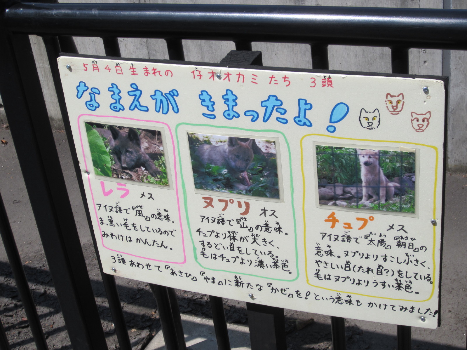 IMG_asahiyamadoubutu0008.jpg