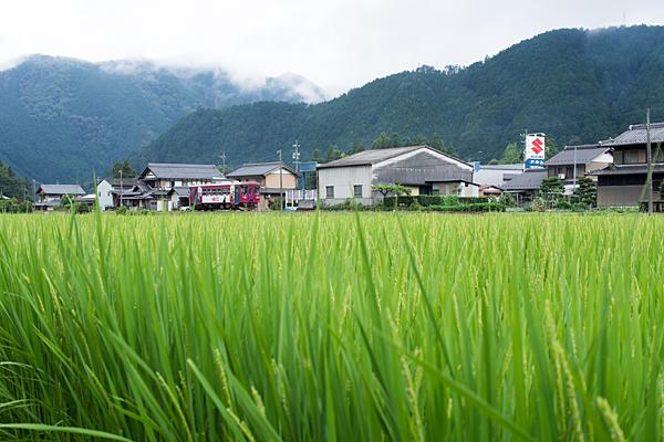 長良川鉄道4-3