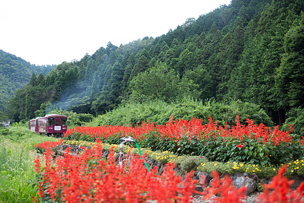 長良川鉄道5-12