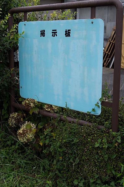 長良川鉄道3-6