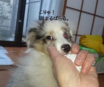 img_2_20140726020209380.jpg