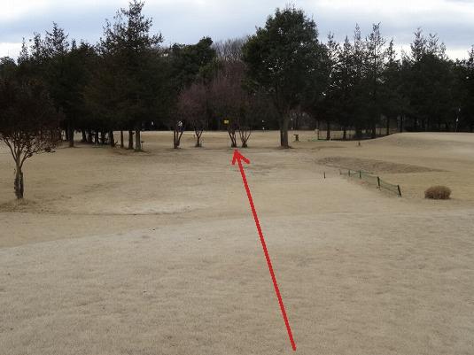 小山パークゴルフコース (7)