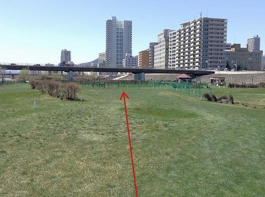 s-140429 豊平川緑地PG南7条 (3)