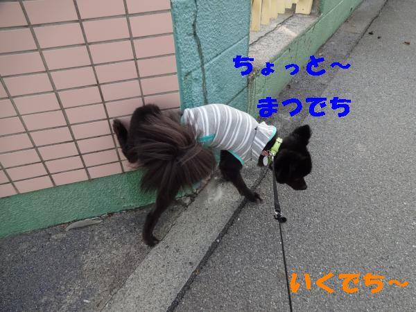 23_convert_20140624183655.jpg