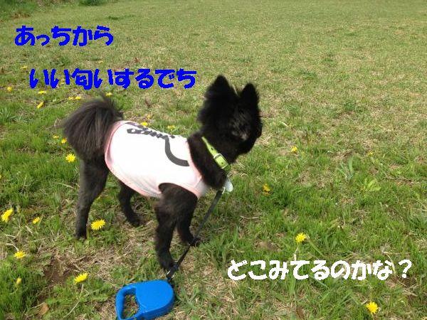 3_convert_20140630194146.jpg