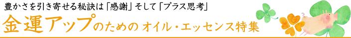 top_bannar_kinun.jpg